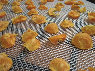 dehydrated kumquats after 6 hours at 135 degrees