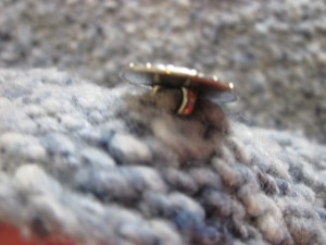 Detail of button knitted directly into the button band