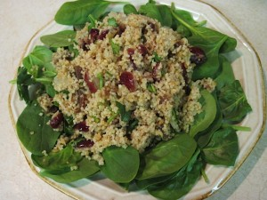 Cranberry and Apricot Couscous Spinach Salad