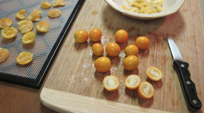 kumquats-img4798